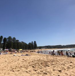 Review: Avoca Beach and Avoca Beach Seafoods